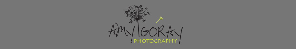 Amy Goray Photography logo